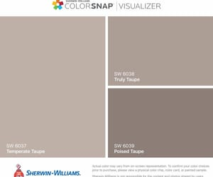 taupe paint image