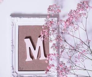 letter m image