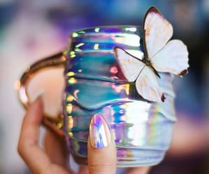 amazing, butterfly, and delicate image