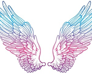 rainbow and wings image