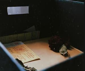 rose, memory box, and rlly edgy i know image
