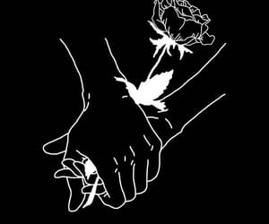 rose, love, and black image