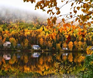 autumn, canada, and fall image