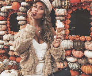 aesthetic, autumn, and fall image