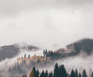 nature, travel, and wanderlust image