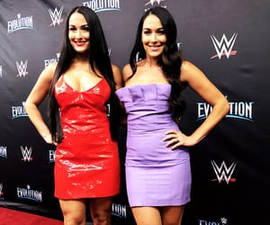 brie bella, wwe, and bella twins image