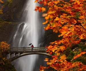 waterfall, autumn, and nature image