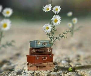 miniaturas and miniatures image