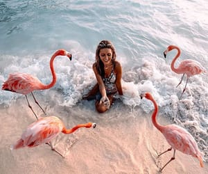 girl, pink, and travel image