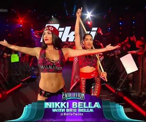 the bella twins, entrance, and bellaarmy image