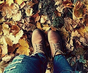 autumn, boots, and red image