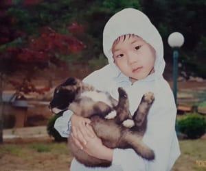 jooheon, kpop, and puppy image