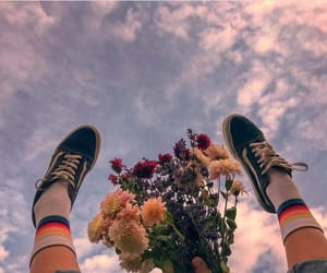 flowers, sky, and vans image