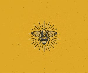 bee, yellow, and aesthetic image