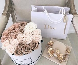 brown, dior, and flowers image