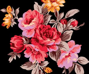 flowers and flowers png image