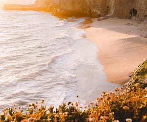 nature, beach, and landscape image