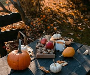 autumn, food, and nature image