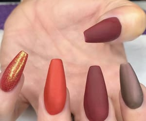 colors, fall, and nails image