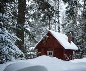 season, snow, and winter image