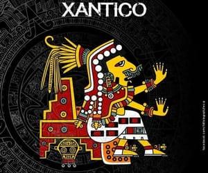 xantico image