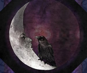 moon, crow, and dark image
