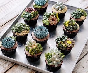 cupcake, cactus, and plants image