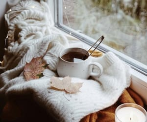 blanket, coffe, and cozy image