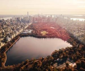 new york, new york city, and nyc image