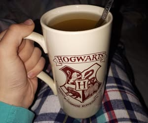cup, hogwarts, and potterhead image