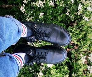 boots, dr martens, and stripes image