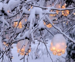 lights, snow, and winter image