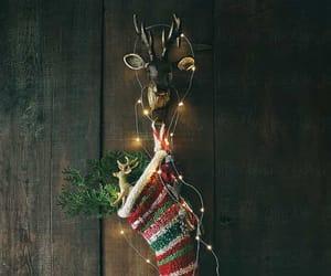 christmas, deer, and holiday image