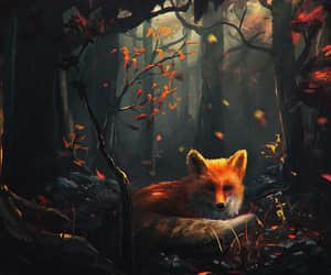 autumn, fox, and leaves image