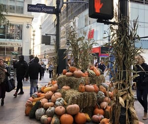 autumn, city, and Halloween image