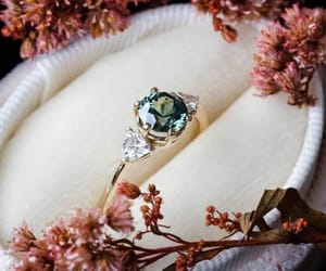 elegant, gentle, and ring image