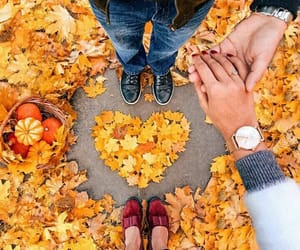 love, autumn, and couple image