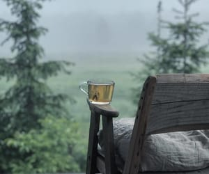 nature and tea image