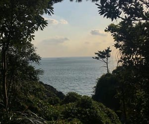 nature, ocean, and green image