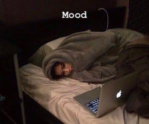 funny, sleeping, and mood image