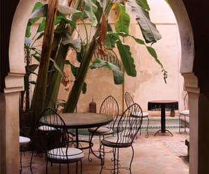 architecture, plants, and travel image
