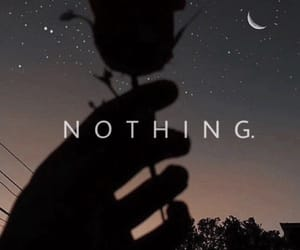 wallpaper, nothing, and rose image