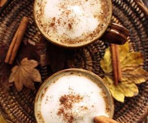 leaves, autumn, and Cinnamon image