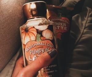 aesthetics, autumn, and lotion image