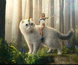 Taylor Swift, aesthetic, and cat image