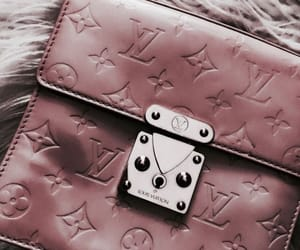 fashion, bags, and Louis Vuitton image