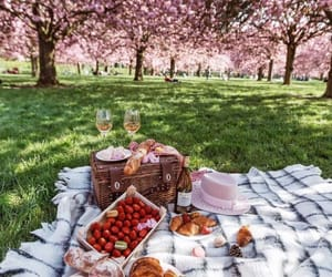 picnic, food, and spring image