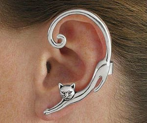 jewelry, cat, and earrings image