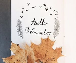 november, fall, and autumn image
