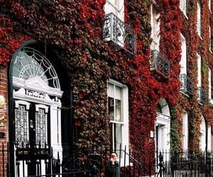 autumn, beautiful, and building image
